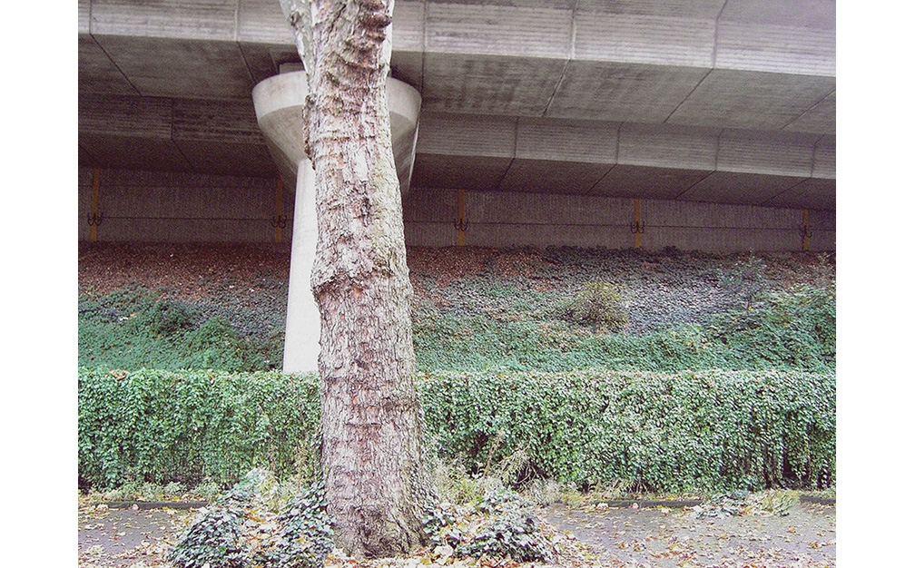 http://www.annasiggelkow.de/files/gimgs/th-9_Anna-Siggelkow-gadv-020-2.jpg